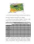 II maionebeli gamosxiveba (radiacia) - momxmarebeli.ge - Page 4