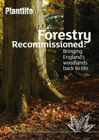 Forestry Recommissioned - Plantlife