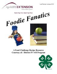 A Food Challenge Recipe Resource - Texas 4-H and Youth ...