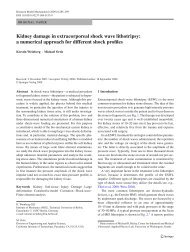 Kidney damage in extracorporeal shock wave lithotripsy - Solid ...