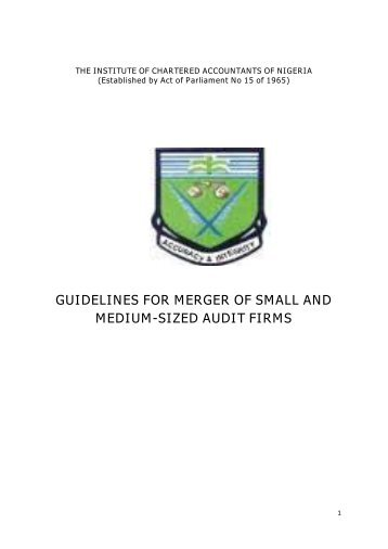 guidelines for merger of small and medium-sized audit firms