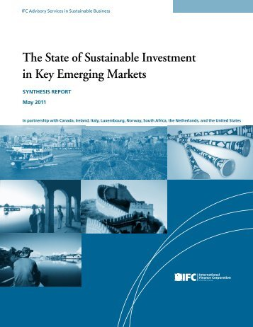 The State of Sustainable Investment in Key Emerging Markets - IFC