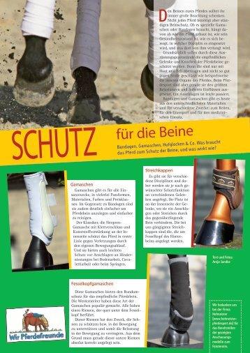 für die Beine - Reiter und Pferde in Westfalen