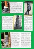 für die Beine - Reiter und Pferde in Westfalen - Seite 2