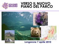 Master Plan - Longarone - 07.04 - Parco Nazionale Dolomiti Bellunesi