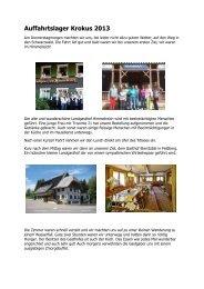 Auffahrtslager Krokus 2013 - Silea