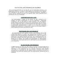 café organico - Cafe Tierra de Promision