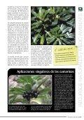 estudio - Page 5