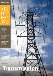 February 2013- Volume 13 - Xcel Energy