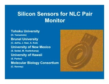 Silicon Sensors for NLC Pair Monitor Silicon Sensors for NLC Pair ...