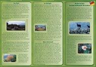 Die Prospekt & karte (pdf)