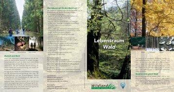 Lebensraum Wald - wildland-bayern.de