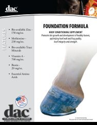Foundation Formula Data Sheet - Direct Action Company