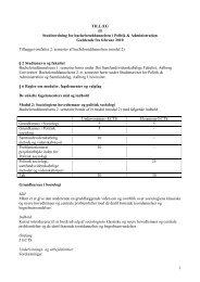 Tillæg til studieordning for Bachelor i Politik/Administration, 2010