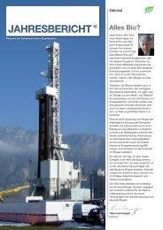 Jahresbericht VSG 2010 - Erdgas