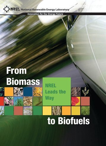 From Biomass to Biofuels: NREL Leads the Way. National ...