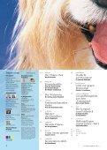 Balance - hundkatzepferd - Seite 3