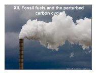 XII. Fossil fuels and the perturbed carbon cycle - INSTAAR