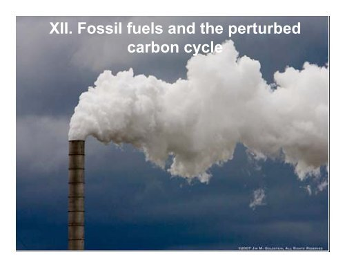 Fuels carbon cycle fossil Lab 5: