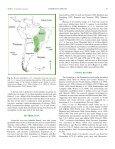 Leopardus braccatus (Carnivora: Felidae) - BioOne - Page 4