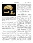 Leopardus braccatus (Carnivora: Felidae) - BioOne - Page 5