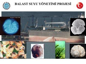 Balast Suyu Yönetimi Projesi