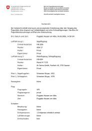 Vorbericht Der Vorbericht enthält eine kurze und provisorische ...