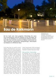FreeLounge, Ausgabe 4-2009, Herstellerportrait
