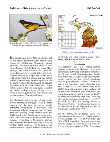 Baltimore Oriole - Michigan Breeding Bird Atlas Website