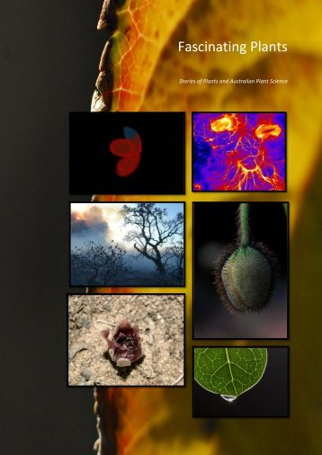 Fascinating Plants (from Plant Energy Biology) - acpfg