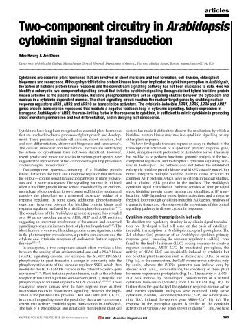 Two-component circuitry in Arabidopsis cytokinin signal transduction