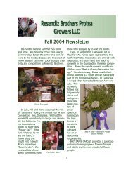 Fall 2004 - Resendiz Brothers Protea Growers