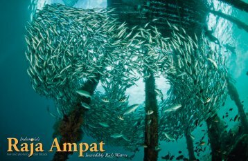 Indonesia's Raja Ampat - X-Ray Magazine