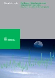 paper - Munich Climate-Insurance Initiative