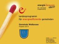 Projekte 2013 - Gitschtaler.at