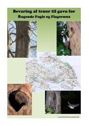 Bevaring af træer til gavn for