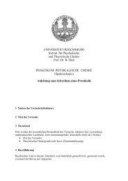 Anleitung zum Schreiben eines Protokolls - Prof. Dr. Bernhard Dick