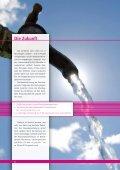Laienbericht - Vinnolit - Seite 6
