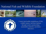 National Fish and Wildlife Foundation - Desert Managers Group