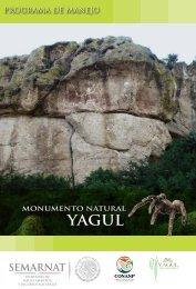 P rograma de Manejo Monumento N atural Y agul MÉ XIC O - Conanp