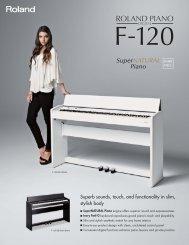 F-120 Leaflet - Roland