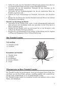 Tentakel-Leuchte - Page 3
