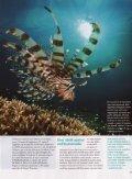 F- = -^1 - Atlantis Beach Resorts - Page 5