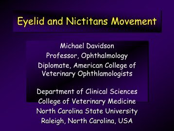 Eyelid Neurology - North Carolina State University College of ...