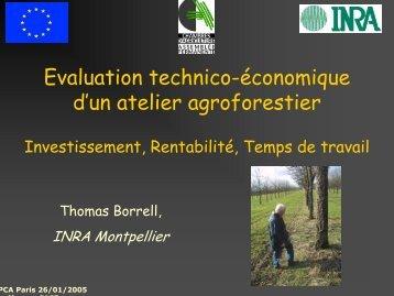 Evaluation technico-économique d'un atelier agroforestier - Inra