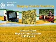 Staging Canola Swathing - SaskCanola
