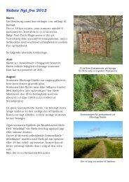 Sidste Nyt fra 2012 - Postamentet