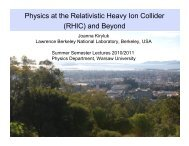 Physics at the Relativistic Heavy Ion Collider (RHIC) and Beyond