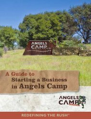 Starting a Business in Angels Camp.pdf - City of Angels Camp