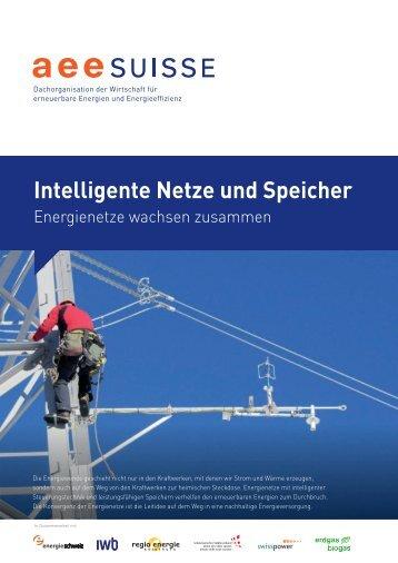 Intelligente Netze und Speicher - Hier ist Energie